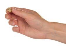 Solone i piec pistacjowe dokrętki w ręce Zdjęcie Royalty Free