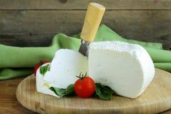 Solony dojny ser (feta ser) obrazy stock