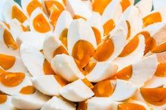 Solony kaczki jajko zdjęcie stock