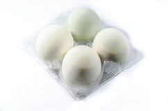 Solony kaczki jajko na białym tle Fotografia Stock