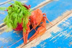 Solos cangrejos hervidos rojos enteros y pequeño cubo rojo del metal con eneldo verde fresco imagen de archivo