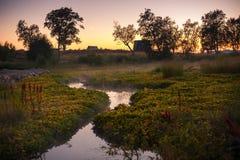 Solovetsky landskap, Solovki Royaltyfri Foto