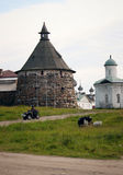 Solovki, Russia Stock Images