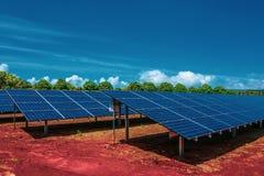 Solpaneler photovoltaics, källa för alternativ energi som står på den röda jordningen med ljus blå himmel och gröna träd arkivbild