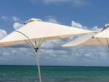 Solparaplyer royaltyfri fotografi
