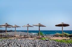 Solparaplyer och deckchairs på den tomma stranden Royaltyfri Bild