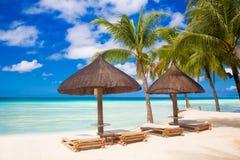 Solparaplyer och strandsängar under palmträden på den tropiska stranden Arkivbild