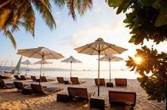 Solparaplyer och strandstolar på den tropiska stranden Arkivfoton