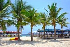 Solparaplyer och strandstolar på den tropiska kustlinjen, Thailand Royaltyfri Foto