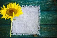 Solros för tappning för blomma för konstbakgrundssommar blom- Royaltyfria Bilder