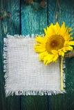 Solros för tappning för blomma för konstbakgrundssommar blom- Royaltyfri Foto