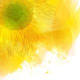 Solros Ljus solig gul blomma på vattenfärgbakgrund Royaltyfri Foto