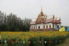 Solros och tempel Royaltyfria Foton