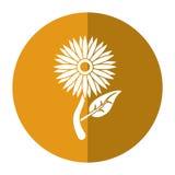 Solrosflora lämnar symbolen för att skugga Royaltyfri Bild
