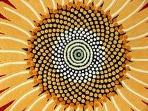 Solrosillustration Arkivfoto