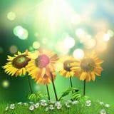 solrosor 3D och tusenskönabakgrund stock illustrationer