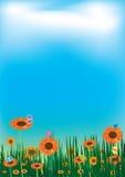 solrosor för sky för liggande för fjärilsoklarhetseps Royaltyfri Foto