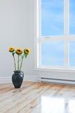 Solrosor i tom lokal med det stora fönstret Royaltyfri Bild