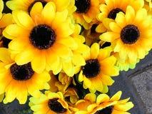 Solrosträdgård med pollen och ljusa gula sidor Gula solrosor för raksträcka Arkivfoton