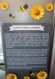 Solrosträdgården på den Changi flygplatsen royaltyfri foto