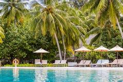 Solsäng och simbassäng i lyxig semesterort royaltyfri fotografi