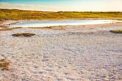 Sols salins de steppe de Kazakhstan Photographie stock libre de droits