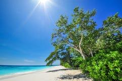 Solsignalljus på det vita strand- och blåtthavet med blå himmel på Tachai Fotografering för Bildbyråer