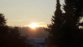 solsken Royaltyfri Foto