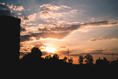 solsken Arkivfoton