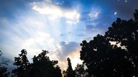 Solsken i ditt liv Arkivbild