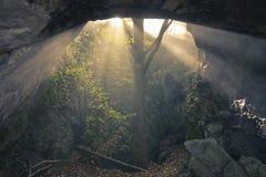 Solsken in i grottan Arkivfoto