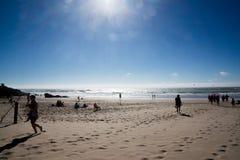 Solsken och blåsig strand royaltyfri foto
