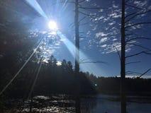solsken på träskdammet Arkivfoton
