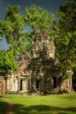 Solskenet på att växa för vegetation av Angkor fördärvar Royaltyfria Bilder