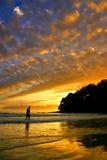 Solskenet seglar utmed kusten, Australien royaltyfri bild