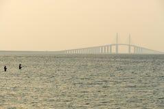 SolskenSkyway bro - Tampa Bay, Florida Arkivfoton