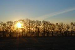 Solsoluppgång fältet Royaltyfri Foto