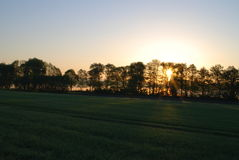 Solsoluppgång fältet Royaltyfria Foton