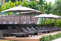 Solstol eller sunbath nära privat simbassäng med solparaplyet och exotiska växter arbeta i trädgården royaltyfria foton