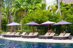 Solstol eller sunbath nära privat simbassäng med solparaplyet och exotiska växter arbeta i trädgården, semestrar och semestrar be royaltyfri fotografi