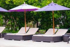 Solstol eller sunbath n?ra privat simbass?ng med solparaplyet och exotiska v?xter arbeta i tr?dg?rden, semestrar och semestrar be fotografering för bildbyråer