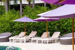 Solstol eller sunbath n?ra privat simbass?ng med solparaplyet och exotiska v?xter arbeta i tr?dg?rden, semestrar och semestrar be arkivbilder