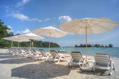 Solstolar och strandparaplyer på stranden Fotografering för Bildbyråer
