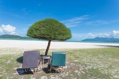 Solstolar på stranden Royaltyfria Bilder