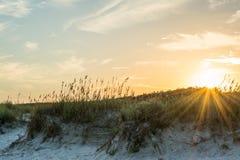 Solstrålar över en dyn Fotografering för Bildbyråer