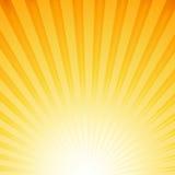 Solstrålar Arkivbild
