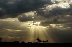 Solstrålar Arkivbilder