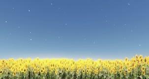 solstrålar för solros 4k & sken, maskros som svävar i den mitt- luften, fältlandskap stock illustrationer