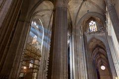 Solstrålar i Catedral de Sevilla, Spanien Arkivfoton