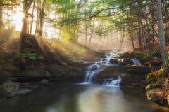 Solstrålar på Wolf Creek Falls Fotografering för Bildbyråer